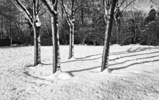 Wie du dein Training in der Kälte genießen kannst 3